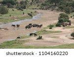 tarangire national park ...   Shutterstock . vector #1104160220