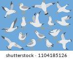 Atlantic Seabird Fly At Sky....