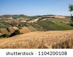 panoramic view of olive groves... | Shutterstock . vector #1104200108