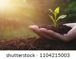 closeup hand of person holding... | Shutterstock . vector #1104215003