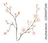 watercolor hand painting... | Shutterstock . vector #1104347144