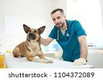 young veterinarian and one of... | Shutterstock . vector #1104372089