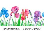 seamless borders with iris... | Shutterstock . vector #1104401900