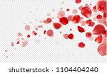 flying red rose petals on a... | Shutterstock .eps vector #1104404240