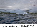 winter and frozen climate | Shutterstock . vector #1104449036