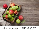ripe green and red apples in... | Shutterstock . vector #1104559169