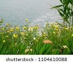 the waterfall of antalya... | Shutterstock . vector #1104610088