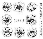 roses flowers hand drawn... | Shutterstock .eps vector #1104619193