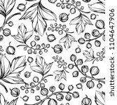 hand drawing botanical black... | Shutterstock .eps vector #1104647906