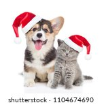 Stock photo pembroke welsh corgi puppy and kitten in red christmas hats sitting in front view together 1104674690