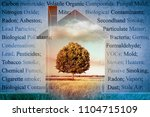 the most common dangerous... | Shutterstock . vector #1104715109