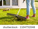 gardening. female adult raking... | Shutterstock . vector #1104752048
