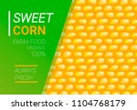 vector sweet corn illustration. ... | Shutterstock .eps vector #1104768179