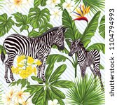 seamless pattern  background ... | Shutterstock .eps vector #1104794993