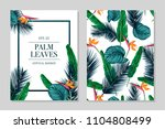 vector exotic pattern with palm ... | Shutterstock .eps vector #1104808499