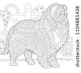 rough collie dog. shetland...   Shutterstock .eps vector #1104881438
