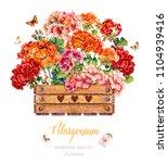 Geranium In A Wooden Box....