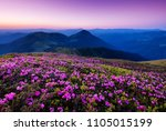 Mountains During Flowers...