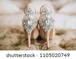 bridal jeweled satin dress... | Shutterstock . vector #1105020749