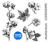 hand drawn black and white set... | Shutterstock .eps vector #1105033490