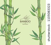 Bamboo  Bamboo Stalk And Leaves....