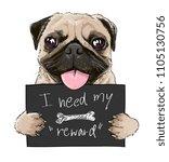 cute pug cartoon holding sign... | Shutterstock .eps vector #1105130756