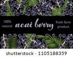 vector illustration of acai... | Shutterstock .eps vector #1105188359