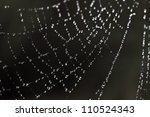 Spider Web Abstract With...