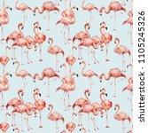 watercolor pink flamingo...   Shutterstock . vector #1105245326