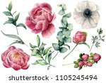 watercolor floral set with... | Shutterstock . vector #1105245494