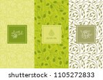vector packaging design... | Shutterstock .eps vector #1105272833