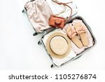 hand luggage with stylish... | Shutterstock . vector #1105276874