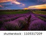 lavender field at sunset | Shutterstock . vector #1105317209