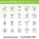grass thin line icons set.... | Shutterstock .eps vector #1105382789