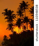 beautiful tropical sunset on a... | Shutterstock . vector #110548538