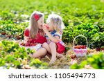 kids picking strawberry on... | Shutterstock . vector #1105494773