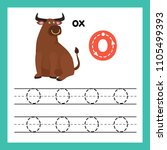 alphabet o exercise with... | Shutterstock .eps vector #1105499393