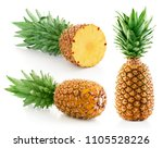 pineapple collection with leaf... | Shutterstock . vector #1105528226