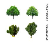 green tree collection isolated... | Shutterstock . vector #1105625423