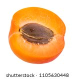 apricot isolated on white... | Shutterstock . vector #1105630448