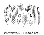 hand drawn vector illustrations.... | Shutterstock .eps vector #1105651250