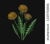 blooming dandelion flower... | Shutterstock .eps vector #1105703006