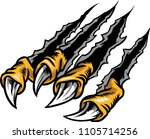 illustration of bird's claw.    Shutterstock .eps vector #1105714256