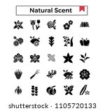 natural scent  flowers and... | Shutterstock .eps vector #1105720133