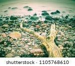 lonely tree on empty stony... | Shutterstock . vector #1105768610