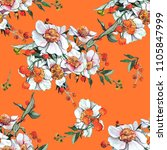 chamomile watercolor... | Shutterstock . vector #1105847999