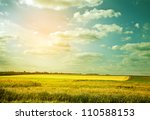 village wheat field in abstract ... | Shutterstock . vector #110588153