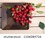 fresh cherry group with leaves... | Shutterstock . vector #1106084726