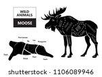 cut of elk set. poster butcher... | Shutterstock .eps vector #1106089946