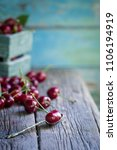 heap of fresh picked cherries... | Shutterstock . vector #1106194919